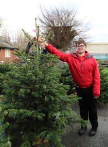 Derwen College Garden Centre has Christmas trees for sale